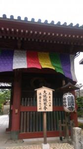 IMAG1235